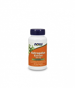 NOW Astragalus Extract 500mg | 90 vcaps
