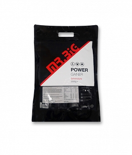Mr.Big Power Gain | 2500g