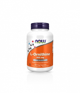 Now Foods L-Ornithine - 500mg - 120 vcaps